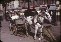 Photograph of Black child sitting in a cart loaded wit furniture attached to a white horse.